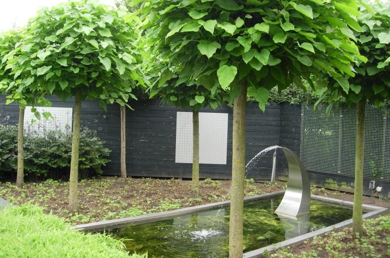 Concepteur paysagiste gen ve c 39 vert bassin point d 39 eau for Concepteur paysagiste